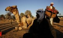 السوق البدوي في النقب مستمر في تل السبع