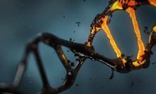 اختبارات الـDNA ونتائجها المبهرة في بعض الأحيان
