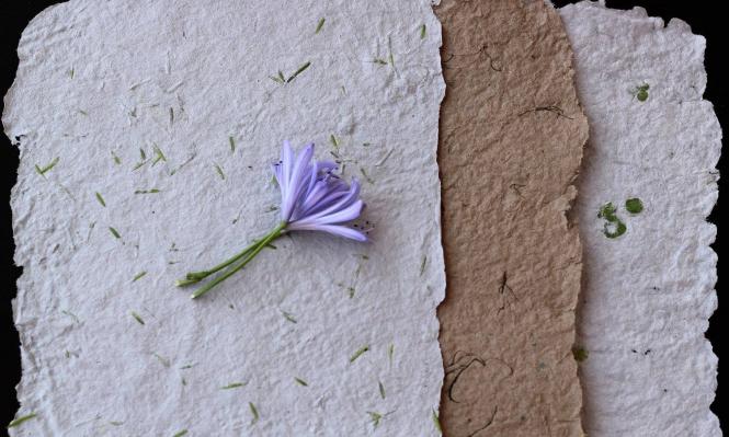 ورشة في صناعة الورق  | عمان