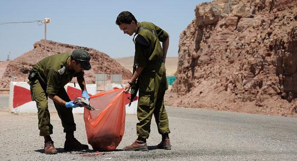 """""""منفذو هجمات إيلات مكثوا في سيناء شهراً على الأقل"""""""