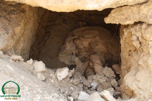"""بعد انتهاك مقبرة الشيخ مونس؛ زحالقة: """"أي جامعة هذه التي تنبش القبور؟"""""""