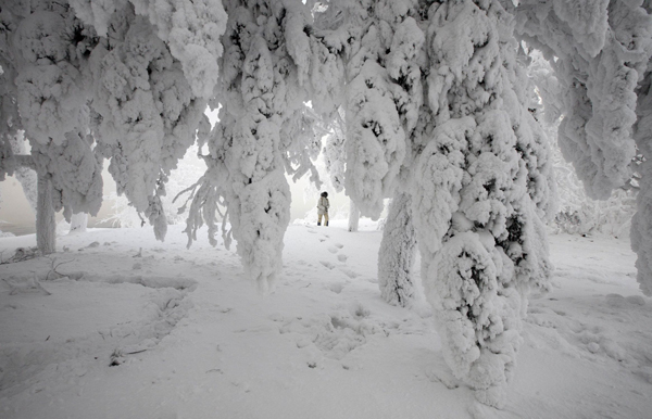 60 درجة تحت الصفر في سيبيريا: وفاة 123 شخصا في روسيا