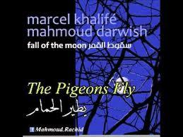 """مارسيل خليفة """" البوم سقوط القمر """" يطير الحمام"""