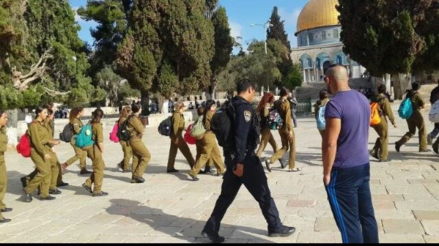 المستوطنون يصعدون من اقتحام الأقصى عشية راس السنة العبرية