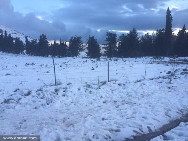الثلوج في الجولان السوري المحتل (صور)