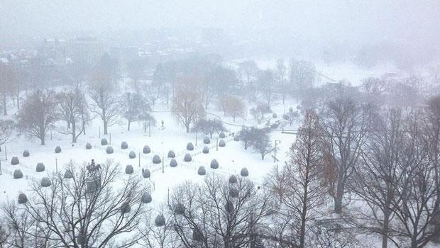 عاصفة ثلجية تضرب نيويورك وإلغاء أكثر من ألفي رحلة جوية