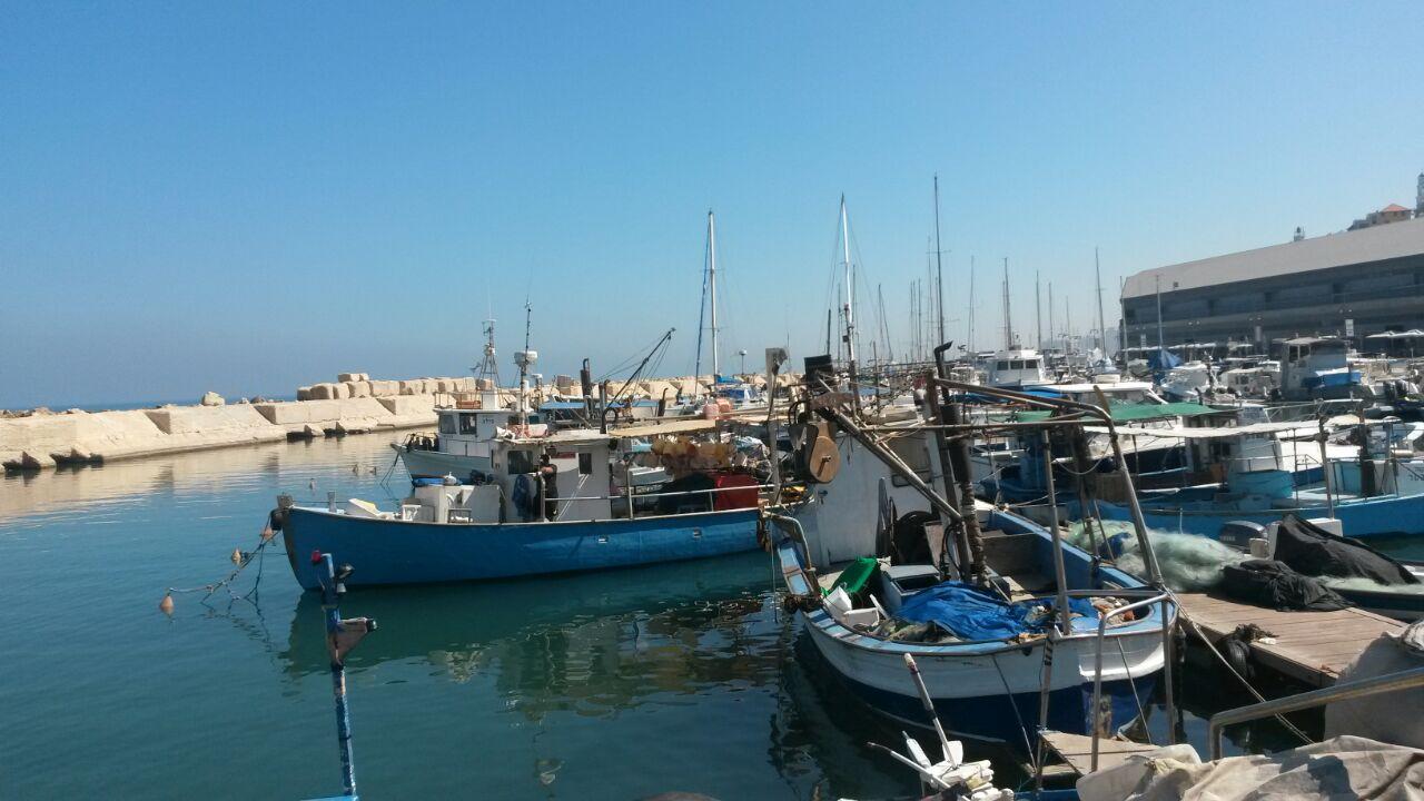 يافا: ملاحقة الصيادين العرب وصراع البقاء في الميناء