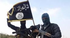 """قريبون من إسرائيل: جماعة موالية لـ""""داعش"""" تسيطر على معبر بالقنيطرة"""