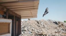 قرية دهمش مسلوبة الاعتراف، فلسطين
