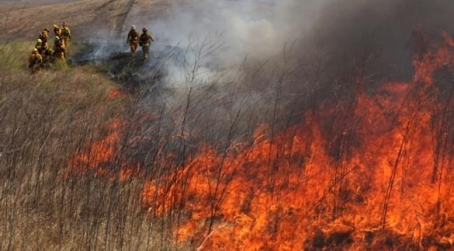اندلاع حرائق في أنحاء مختلفة من البلاد بسبب حالة الطقس