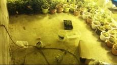 تل السبع: الكشف عن مختبر في باطن الأرض لزراعة المخدرات