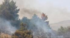حريق في منطقة حرشية شرق قرية دير حنا