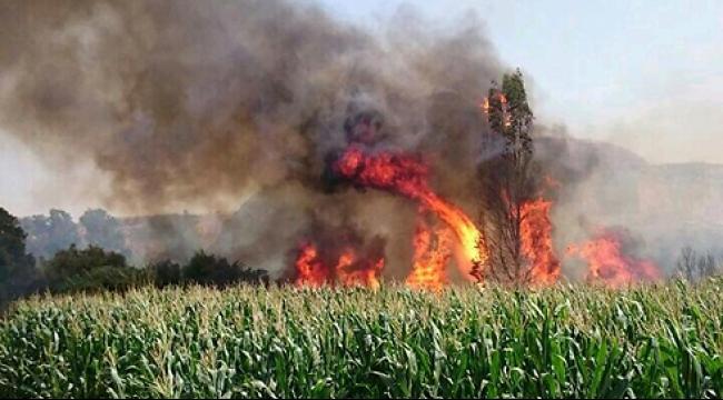 اندلاع حرائق في عدة مواقع في الشمال