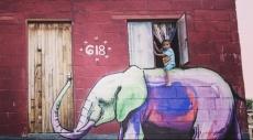 إبداع الجرافيتي في جنوب أفريقيا