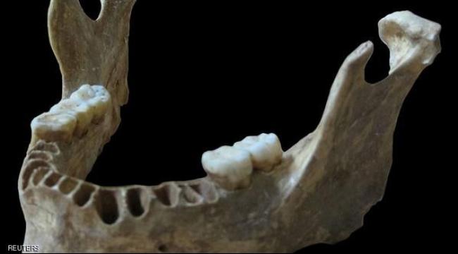 عظام فكّ تسلّط الضوء على تزاوج الأقارب مع إنسان النياندرتال