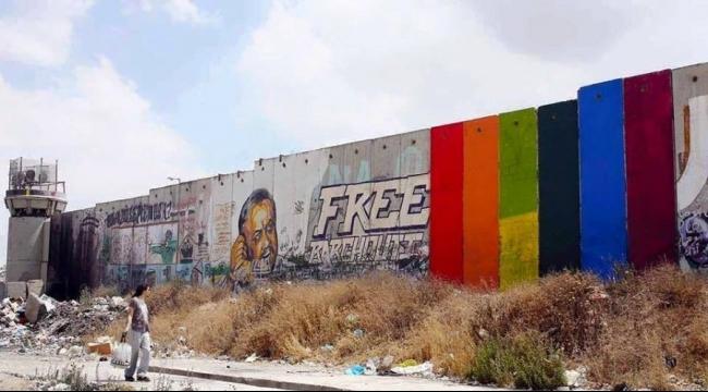 نبض الشبكة: ألوان قوس قزح على الجدار