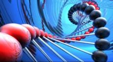 غوغل تسخّر خدماتها المعلوماتية لتطوير علم الجينوم