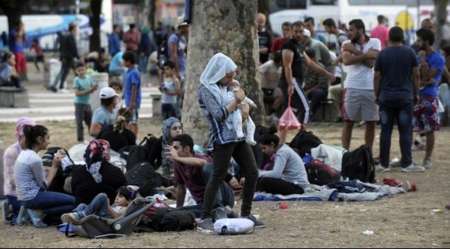 الداخلية الألمانية: غالبية طلبات اللجوء من سوريا