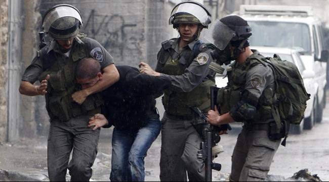 الاحتلال يعتقل 31 مواطنا فلسطينيا