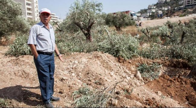بدء العمل لاستكمال جدار الفصل في منطقة بيت جالا
