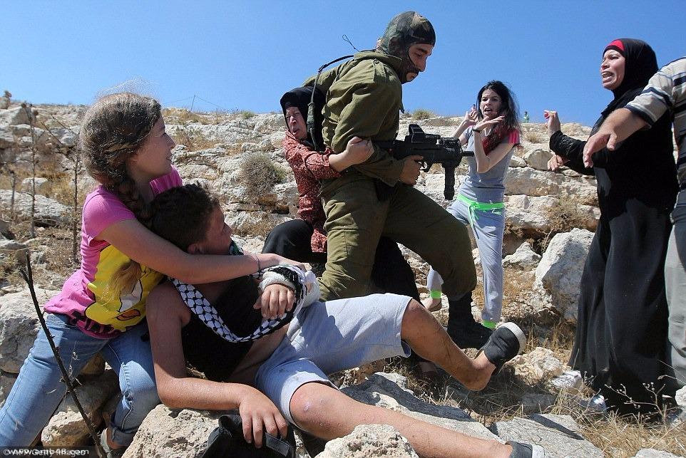 الصحافة الإسرائيلية تحرّض على عائلة تميمي وريغيف تدعو لإعدام ميداني