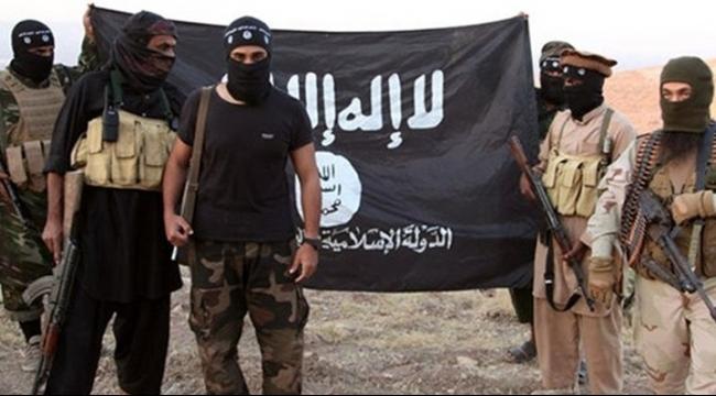 مقتل ما لا يقل عن 16 عنصرًا من داعش بقصف التحالف الدولي