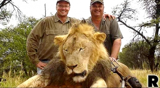 """قاتل """"سيسيل"""": الصيد كان قانونيًا"""