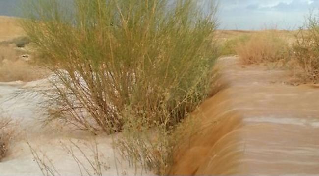 بعد العاصفة الرملية: برد في الشمال وفيضانات في الجنوب