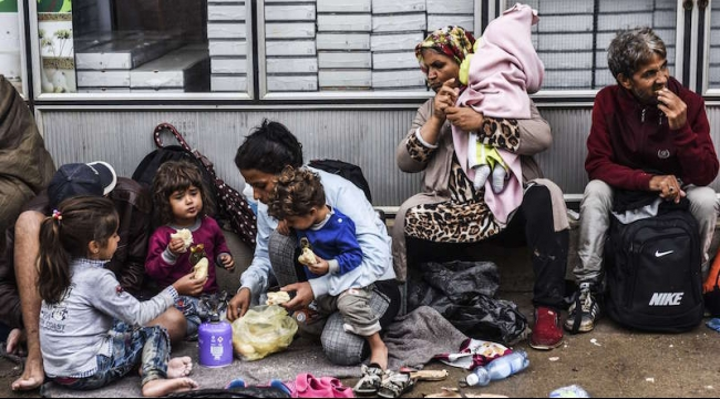أبرز أرقام أزمة اللاجئين في أوروبا