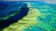أستراليا: الحاجز المرجاني العظيم في خطر