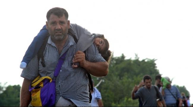 مطالبات بالعمل الجماعي والتعاطف مع اللاجئين