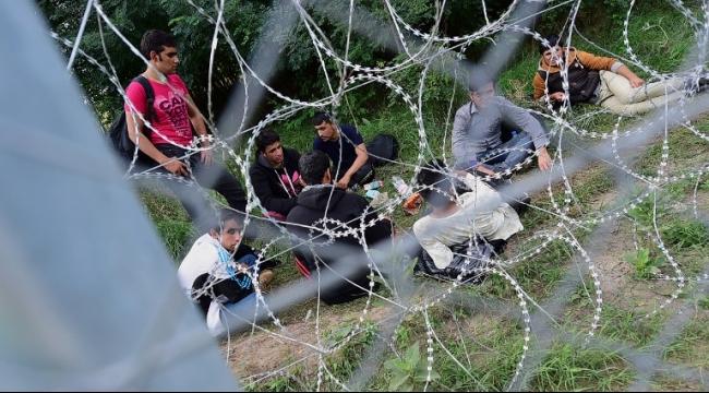 60 طائرة لإخراج اللاجئين من الاتحاد الأوروبي