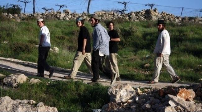 احتشاد أعداد من المستوطنين شرق بيت لحم
