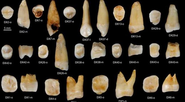 دراسة: الإنسان الحديث وصل آسيا قبل أوروبا