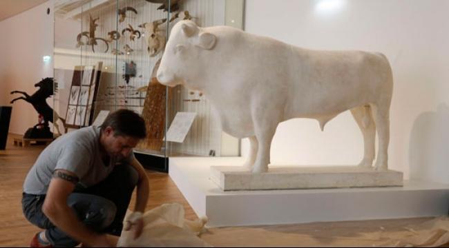 بعد ست سنوات من إغلاقه : متحف البشرية يفتح أبوابه