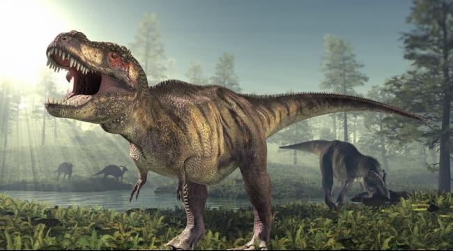 اكتشاف ثدييات محفوظة منذ عهد الديناصورات