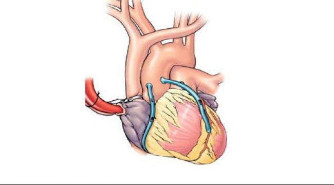 التدخين السلبي يزيد من احتمال عدم انتظام دقات القلب