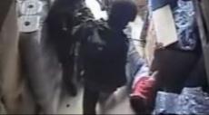 فيديو: جنود الاحتلال يعتدون على فلسطيني بوحشية