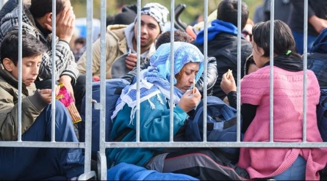 ألمانيا: اعتقال 2653 مهربُا