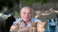 القطط مستهدفة: أرئيل يطرح مخطّط ترانسفير للقطط