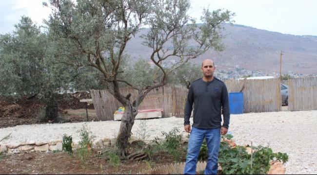 مجد الكروم: أخطبوط المصادرة يستهدف أراضي البلدة