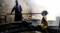 """""""العسل الأسود"""".. وجبة الفقراء المصرية"""