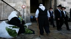 """جديد """"مدى الكرمل"""": التحولات الديمغرافية بإسرائيل والمناطق الفلسطينية"""