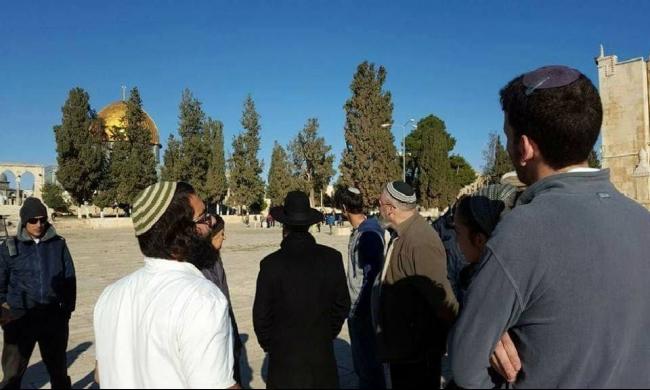 القدس: اقتحامات للأقصى وأوامر هدم في سلوان