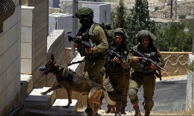 بيت لحم: الاحتلال يعتقل شابا ويسرق مالا ومصاغا ذهبيا