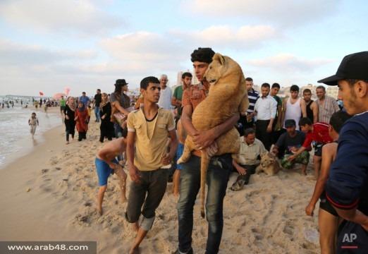 الشرق الأوسط.. ملخص 2015 في صور