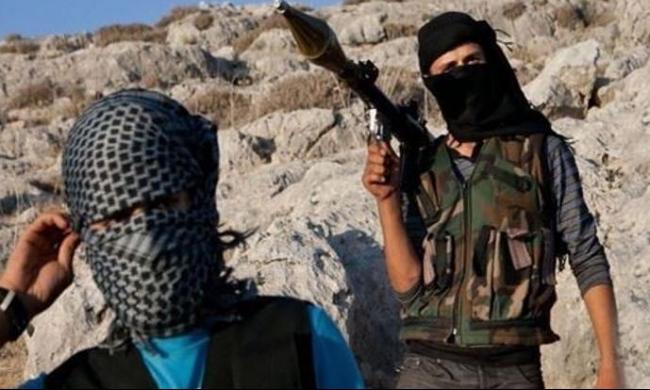 عودة أكثر من 600 جهادي تونسي من سورية إلى بلادهم