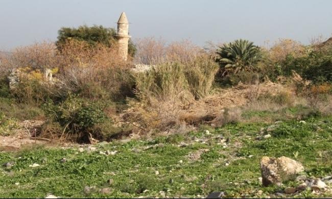 """""""جمعية المهجرين"""" ترفض إقامة أي قرية على أراضي نمرين"""