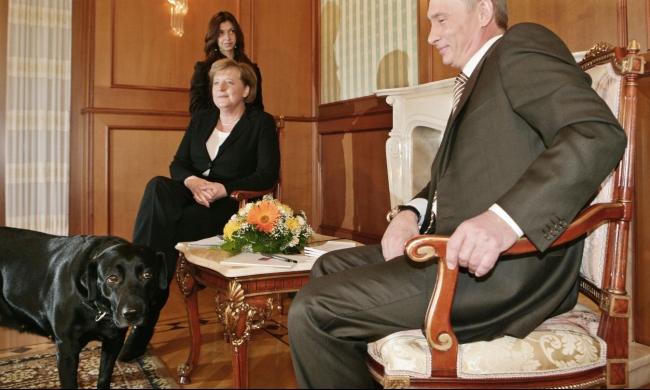 بوتين يعتذر لميركل بسبب... كلب!