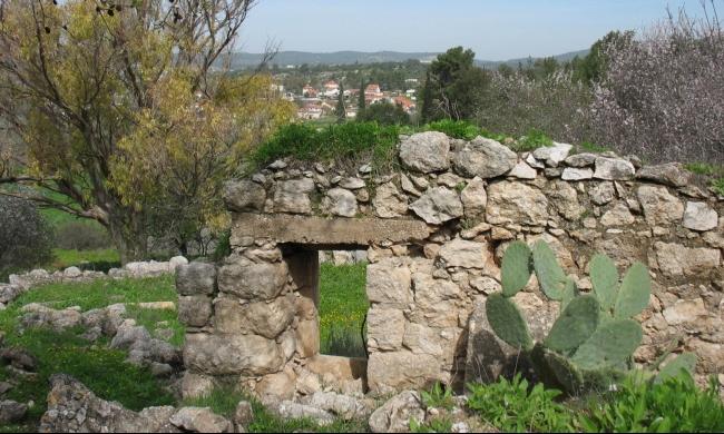 السبت المقبل: جولة في القرية الفلسطينية المهجرة دير أبان